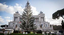 Rome moquée pour son sapin