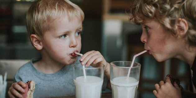 Sondage Léger: le lait de vache est-il bon pour la
