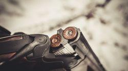 BLOGUE Analyse de la Loi sur l'immatriculation des armes à