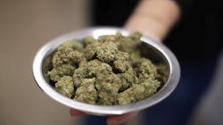 Des milliers d'amnisties liées à la marijuana en