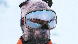Ces masques de ski vont plaire aux amoureux des