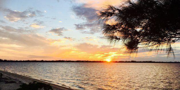 Fort Myers, le côté nature de la