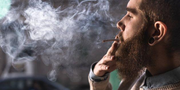La consommation de cannabis a doublé au pays de 1985 à