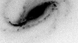 Un astronome amateur décroche le jackpot en débusquant une