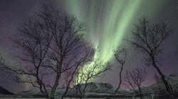 Des images époustouflantes d'aurores
