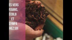 Le compost des végétaux : un must pour sa