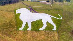 Ce lion géant a nécessité 800 tonnes de craie pour être