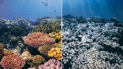 Ces photos de lieux paradisiaques avec puis sans retouche font froid dans le