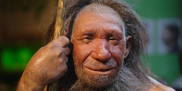 L'homme de Néandertal avait un gros nez pour mieux survivre au