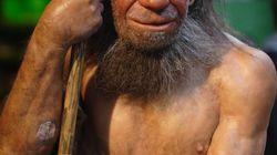 Voici pourquoi l'homme de Néandertal avait un gros