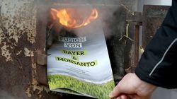 Pourquoi la fusion de Monsanto et de Bayer devrait vous
