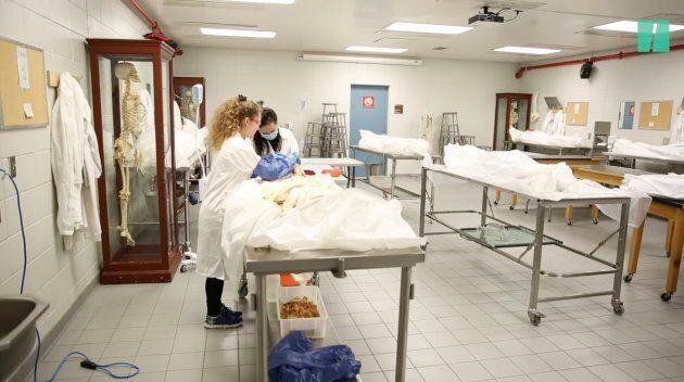 Deux étudiantes en podiatrie se pratiquent en vue d'un