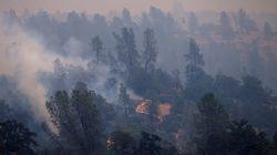 Vents «erratiques» et sécheresse attisent les incendies mortels de