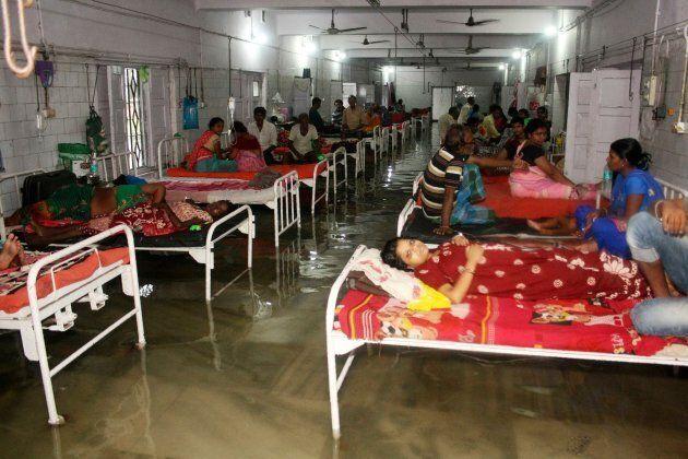 Inondations en Inde: des poissons nagent dans les couloirs de