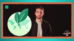 Jeunes électeurs: on te parle d'environnement pour t'aider à décider le 1er