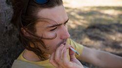 La Ville de Québec veut interdire de fumer du cannabis dans les endroits