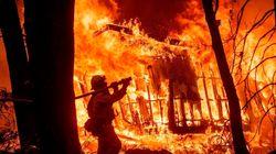 Le feu de forêt qui a ravagé le nord de la Californie est