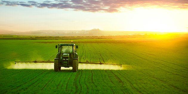 Le gouvernement de la CAQ a répliqué à ces troublantes découvertes en lançant une commission sur les impacts des pesticides sur la santé. Il faut bien sûr s'en réjouir, mais aussi déplorer qu'elle ne se penchera pas sur une question essentielle, soit l'indépendance des agronomes et de la recherche.