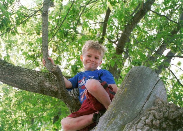 Le petit Raphaël adorait grimper aux arbres.
