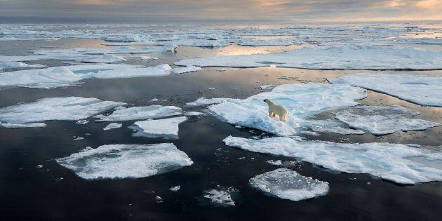 Le réchauffement climatique se fait de plus en plus sentir en