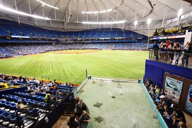 Les Rays peinent à remplir le Tropicana Field et sans un nouveau stade, il semble bien que l'équipe devra...