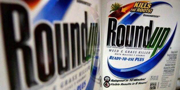 Le «Roundup» de Monsanto, un herbicide à base de