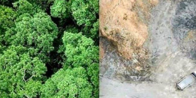 #10yearschallenge Les défenseurs de l'environnement détournent le
