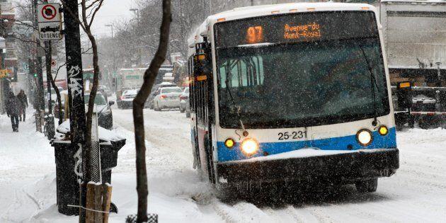 Un autobus de la Société de transport de Montréal sur l'avenue du Mont-Royal.