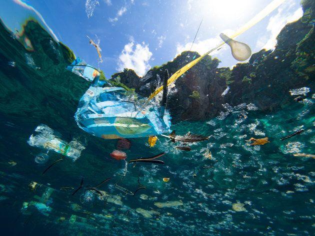 Bannir les pailles en plastique ne sauvera pas les