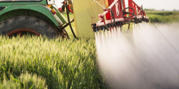 Lanceurs d'alerte et pesticides: Louis Robert doit être
