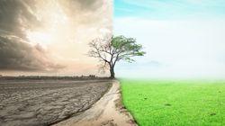 Les problèmes environnementaux de la Terre sont de plus en plus
