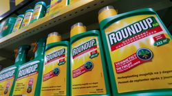 Monsanto subit un second revers en