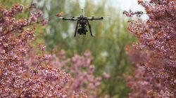 L'OACI veut établir un système international de suivi des drones
