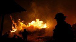 Plus de 100 incendies de forêts brûlent toujours au