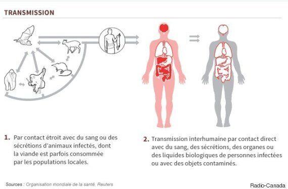 Ebola: le virus continue de sévir au