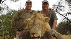 Le Zimbabwe renonce à poursuivre le tueur du lion