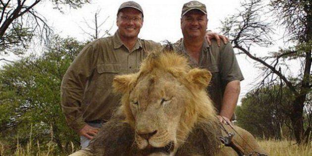 Le Zimbabwe renonce à poursuivre le dentiste américain qui a tué le lion