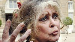 «Stop à l'Aïd el Kebir humain»: Brigitte Bardot se lâche sur Twitter après les