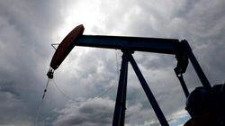 Prince Albert décrète l'état d'urgence à la suite du déversement de pétrole