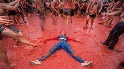 La plus grande bataille de tomates fête ses 70 ans