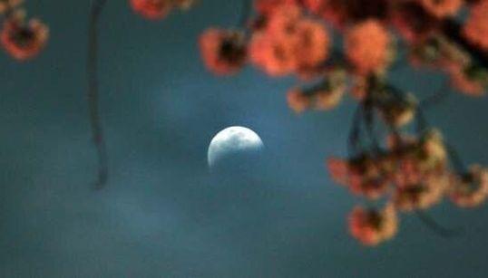 Si vous avez manqué l'éclipse lunaire ce matin? La