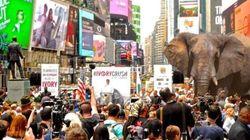 Destruction massive d'ivoire pour l'amour des éléphants