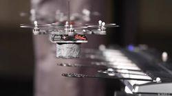 Ces drones sont de vraies vedettes