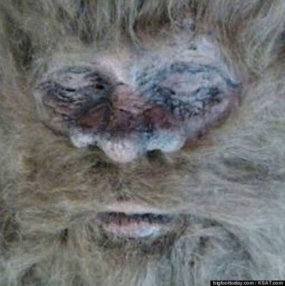 Le chasseur Rick Dyer prétend avoir tué un Bigfoot et s'apprêterait à exposer son corps aux États-Unis