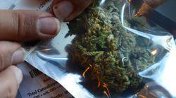 Cannabis à des fins médicales, la bonne