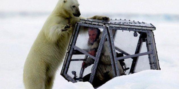 Un ours polaire attaque un cameraman de la BBC