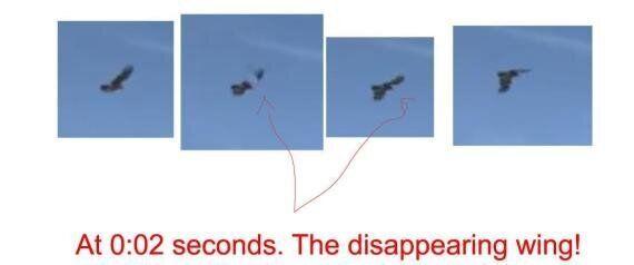 La vidéo YouTube d'un aigle royal tentant d'enlever un enfant sur le Mont-Royal est-elle fausse? (VIDÉO,...