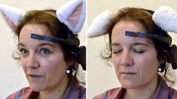 Gadget: des oreilles de chats contrôlées par le cerveau