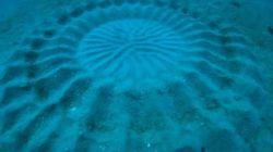 Une incroyable découverte faite dans les eaux
