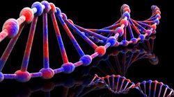 23 and me: Obtenir son code génétique pour